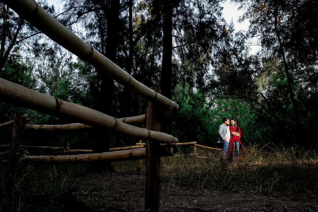 bosque los colomos